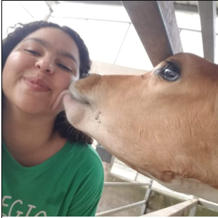 Natalia Cid Hernández being licked on cheek by a cow